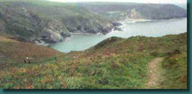 Part of the Pembrokeshire Coastpath